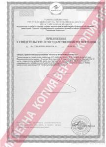 сертификат сяо яо_2